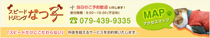 当日のご予約歓迎します!受付時間:9:00〜16:00(不定休)